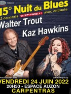 Nuit Du Blues De Carpentras
