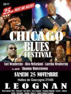 Nuit Du Blues Festival